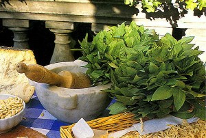 pesto course in levanto close to cinque terre