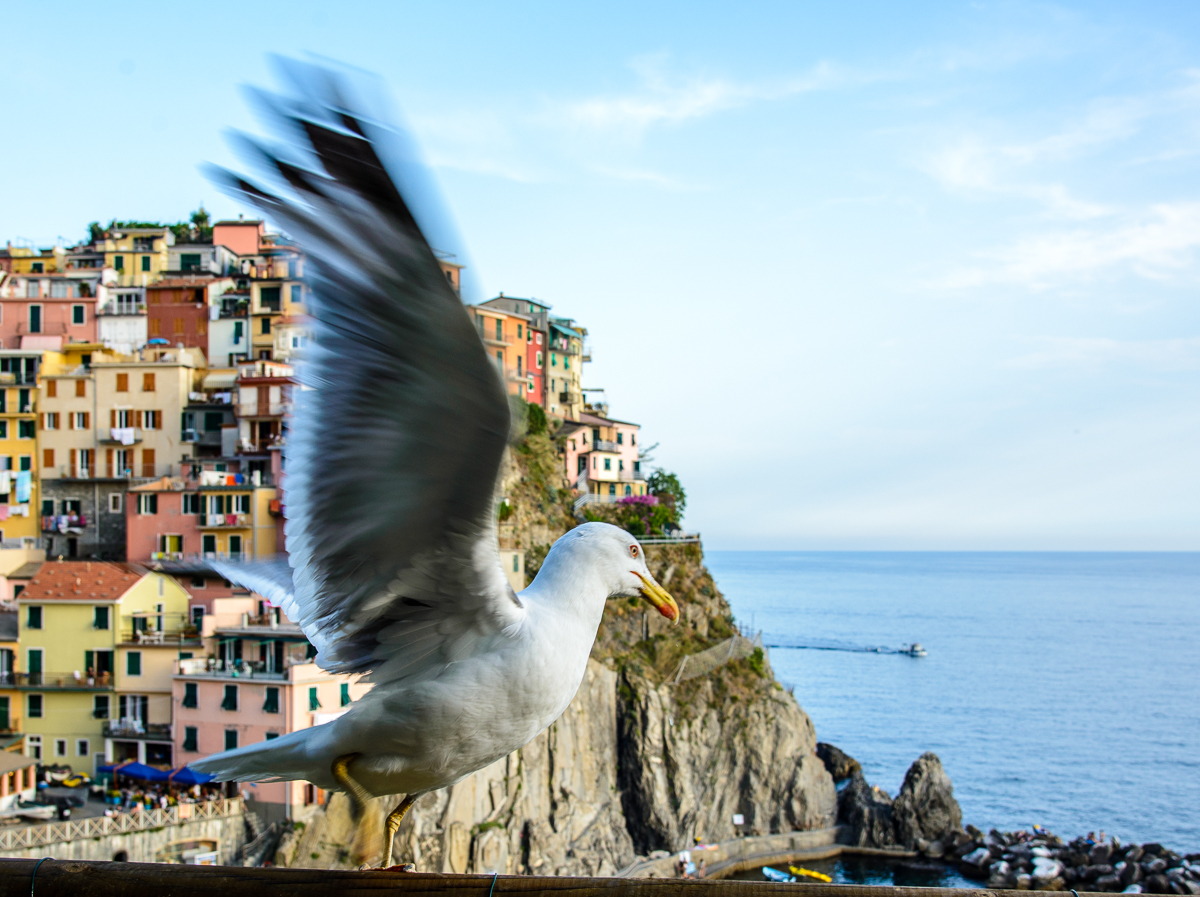 photographic workshop cinque terre