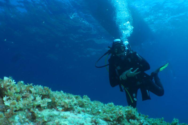 diving portovenere