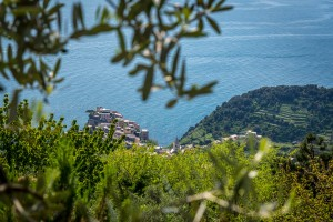 Self guided hiking manarola cinque terre