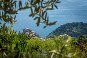 Self guided hiking manarola cinque terre