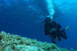 diving tour cinque terre