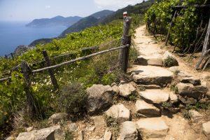 Cinque Terre walking tour