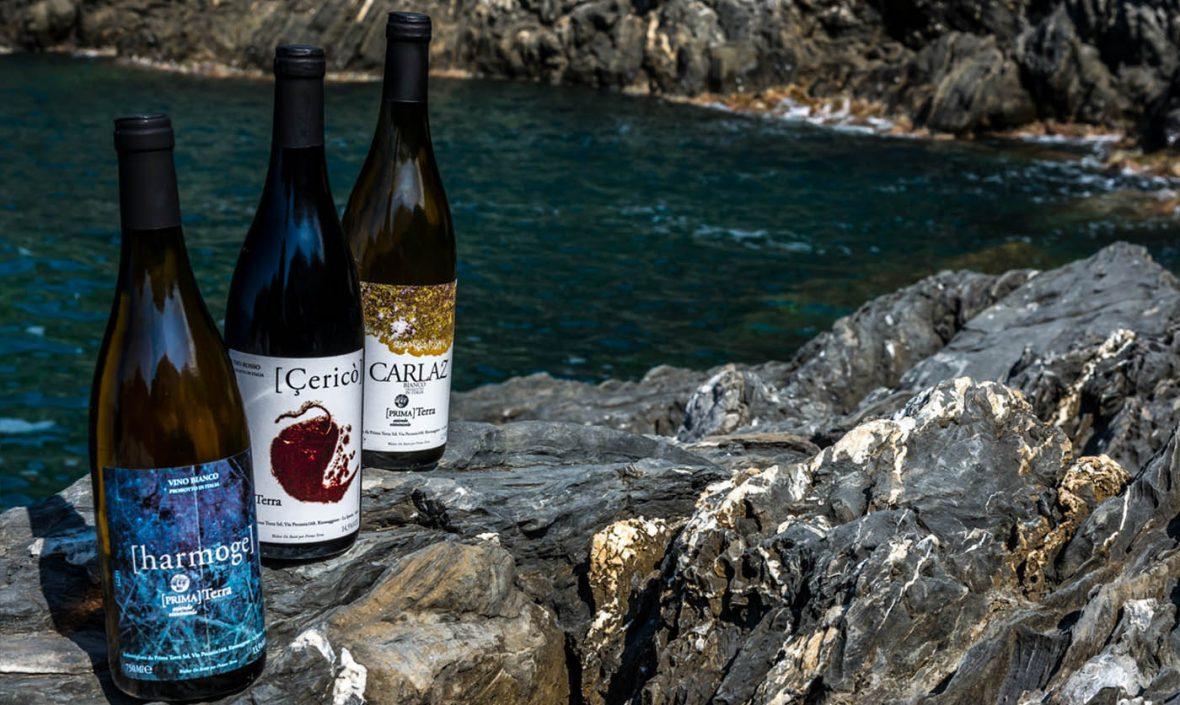 Prima Terra slow wine 2020