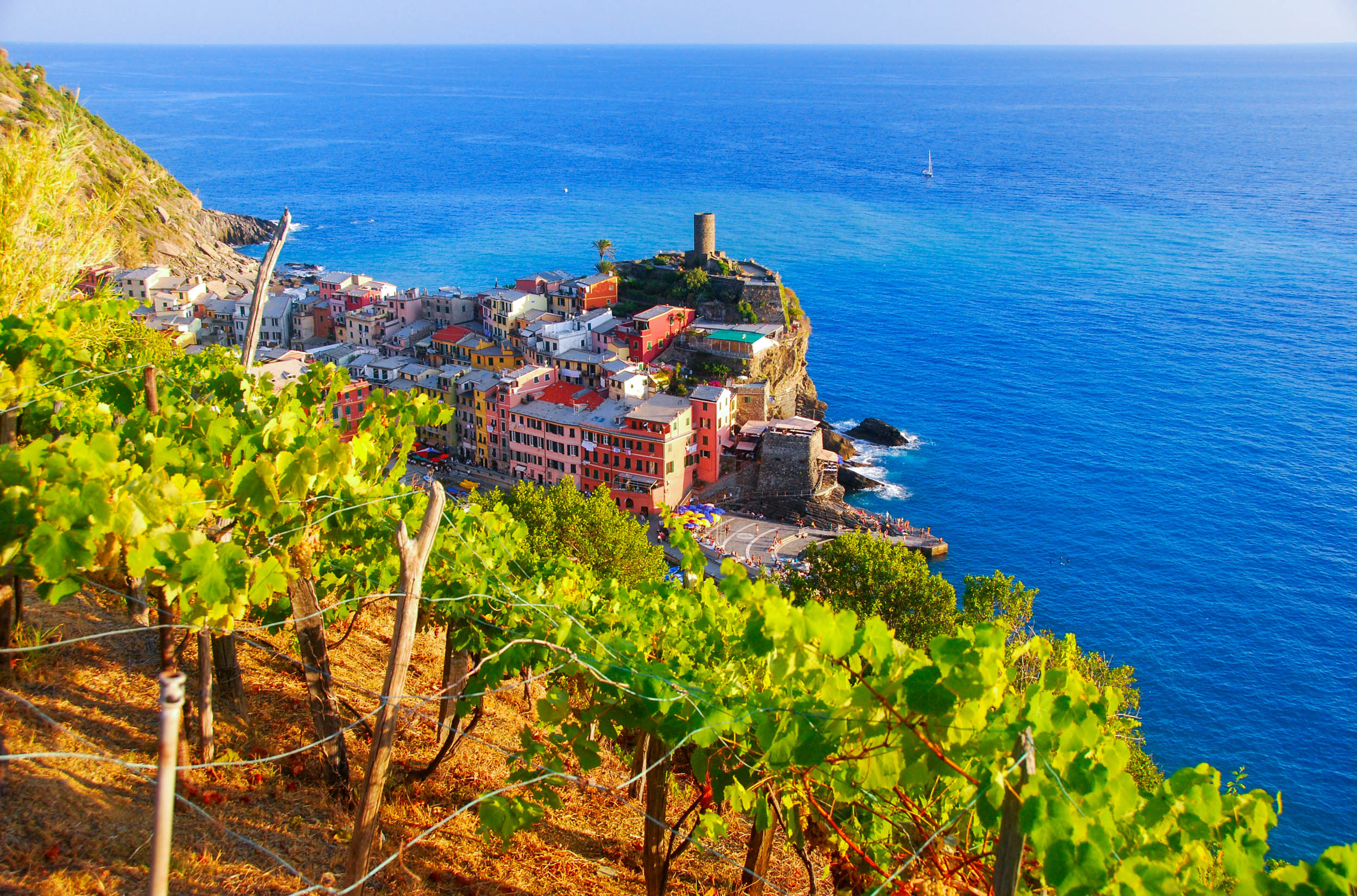 tour del vino cinque terre